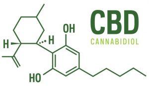 cbd science