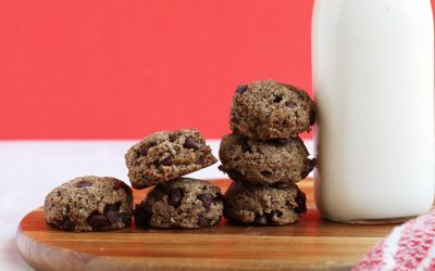 The Best 5 Ingredient Paleo Chocolate Chip Cookies