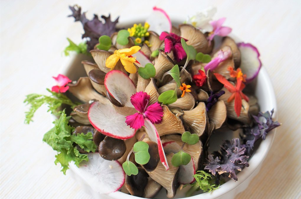 10 Edible Wildflowers You Should Have For Lunch