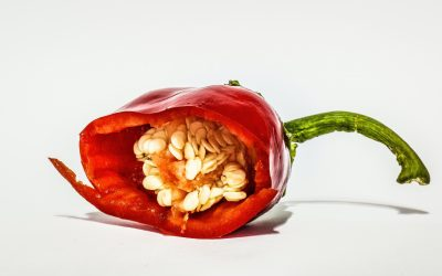 Health Benefits of Eating Chili Peppers – The Hottest Food